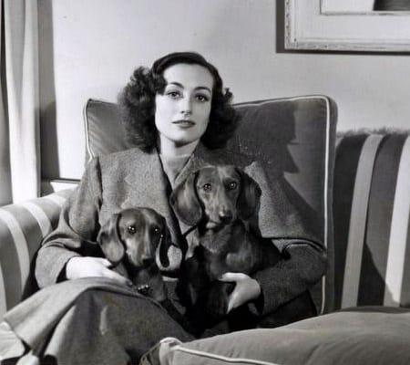 Joan Crawford (1937) mit den Dackeln Baby und Bübchen