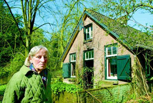 Henny van Breukelen - 2006