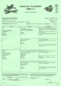 DTK-Ahnentafel Botzensteiners Chlodwig